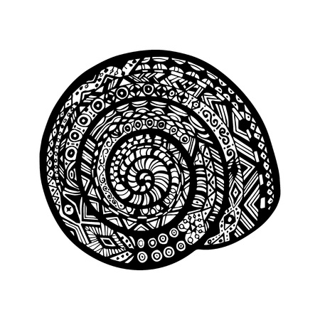 mollusk: Hand drawn snail shell on white background. Vector snail in doodle and zentangle style