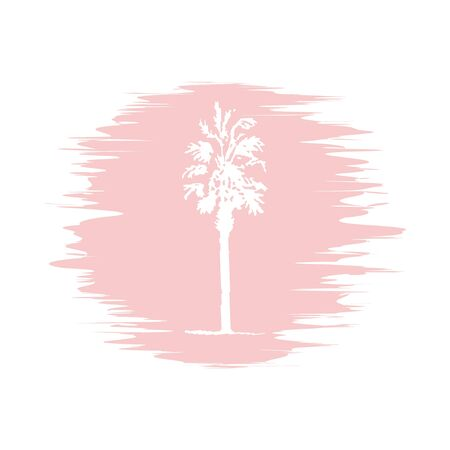 date palm: Hand drawing sketch of palm tree on blur background