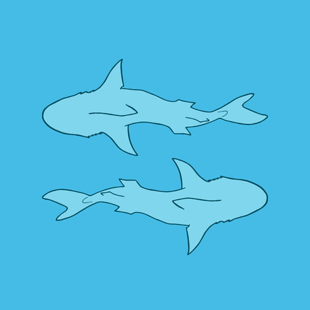 Vector illustration silhouette of two sharks on blue background. Vector two sharks top view. Illustration