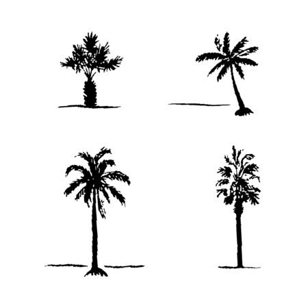 date palm: Set of hand drawn sketch palm trees on white background. Vector set of four palm trees.  set of palm trees.