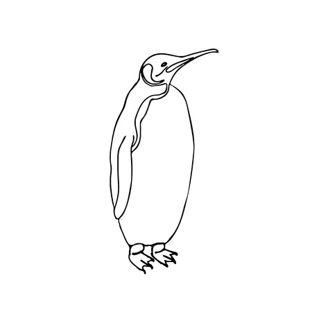 Vector sketch illustration emperor penguin.
