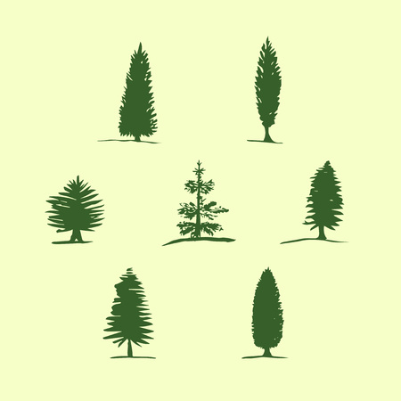 cypress: Set of hand drawn sketch trees - pine, fir tree, cypress.