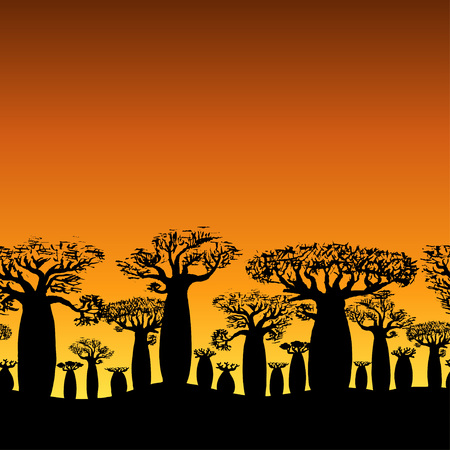 seamless decorative border of baobabs silhouette on sunset or sunrise