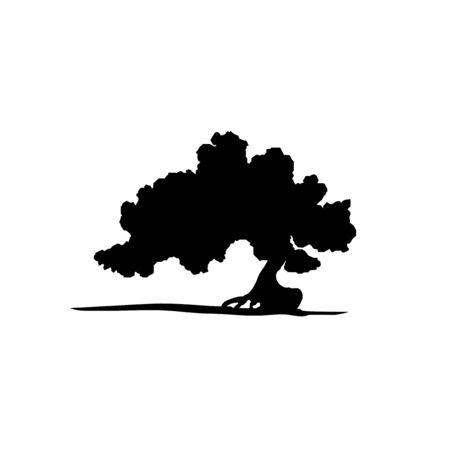 bonsai: Vector silhouette of bonsai tree. Illustration