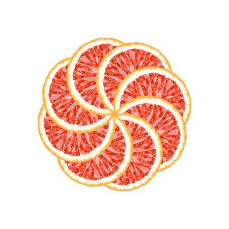 Vector illustration of grapefruit slices Illustration