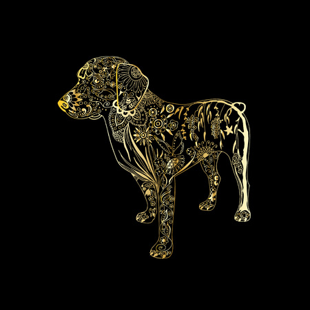 Vector hand drawn golden dog on black background