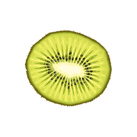 ベクトル キウイ スライス。現実的なフラット トロピカル フルーツのキウイ。