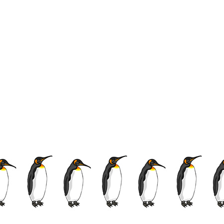Vector decorative border from bird penguin on white background. Emperor penguin