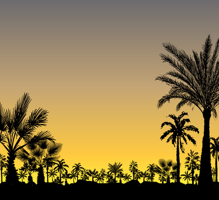 Vector card with realistic palm trees silhouette on tropical grunge sunset or sunrise background