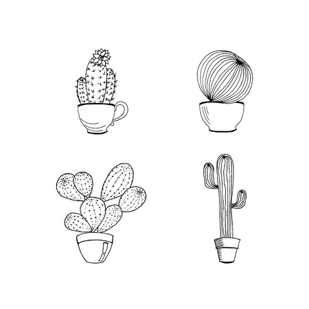 Vector set of hand drawn cactus in pot.