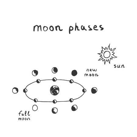 Vector hand drawn moon phases scheme. Sketch lunar phases Illustration