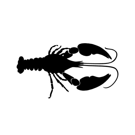 Vector illustration of black crawfish silhouette on white background. Cancer silhouette