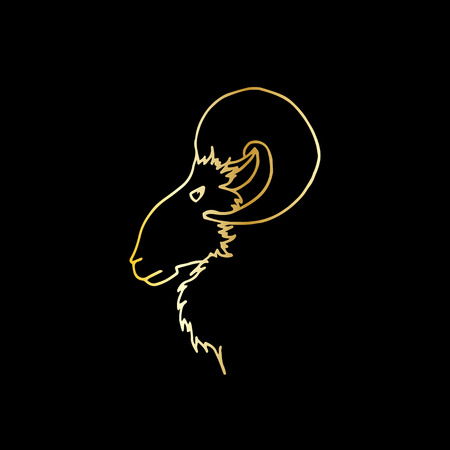 Vector illustration of hand drawing ram head in profile. Golden sketch goat silhouette Çizim