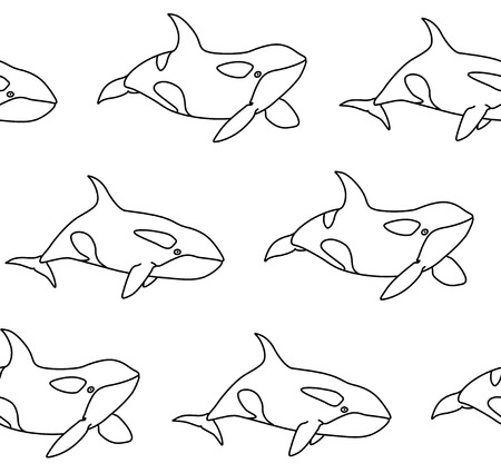 Vector seamless pattern of killer whale in outline style. Line art cartoon orca on white background