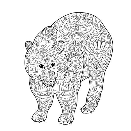 Vector illustration of bear. Coloring page book anti stress for adult