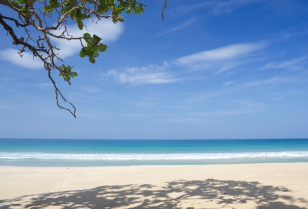 Tropical white sand beach and blue sky photo
