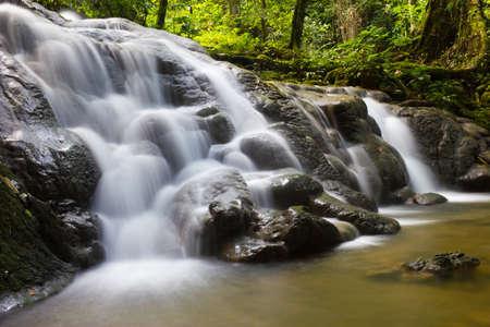 Sa Nang Manora forest park in Phangnga, Thailand Stock Photo - 11591246