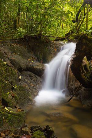 Sa Nang Manora forest park in Phangnga, Thailand Stock Photo - 11591250