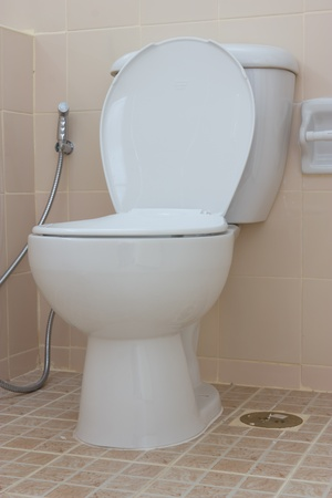 Home flush toilet Stock Photo - 13225358