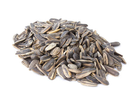 Sunflower seeds isolated on white background photo