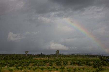 Dark clouds and rainbow above palm garden photo