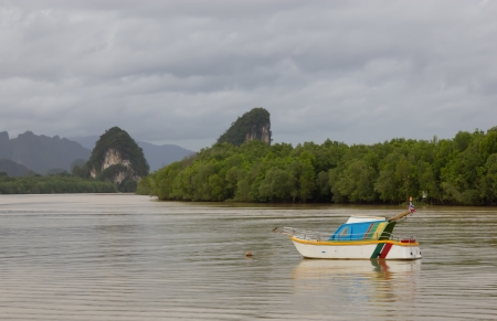 Fishing boat moored in the mangroves on the overcast Stock Photo - 15248752