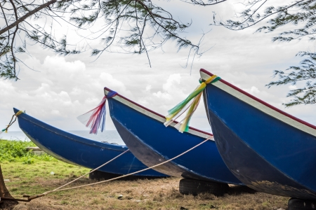 Boats moored on the ground Stock Photo - 15377850