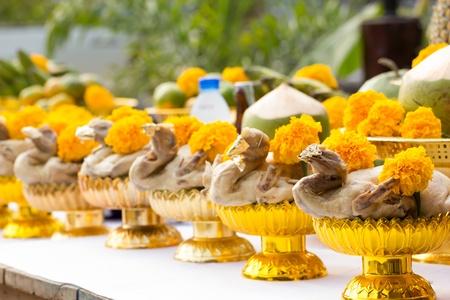 dead duck: Chickens for sacrifice