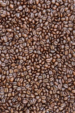 コーヒー豆のテクスチャ