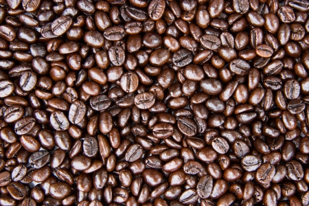 Texture of coffee beans Standard-Bild