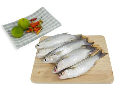 Fresh mullet fish on wood