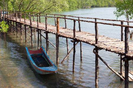 mangroves: Boat moored in the mangroves