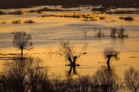 Sunset over the basins river Narew somewhere on Podlasie, Poland