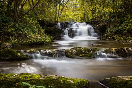 Waterfall in Dolzyca, Bieszczady, Poland 스톡 콘텐츠