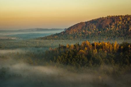 Foggy morning on the Jura Krakowsko-Czestochowska, Mirow, Poland