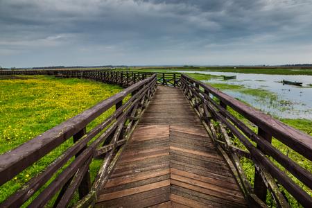 Narew river in Narew National Park near Waniewo village, Podlasie, Poland