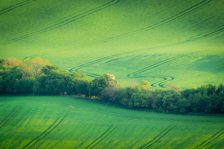 Moravian fields at spring near Kyjov village, Czech Republic Stock Photo