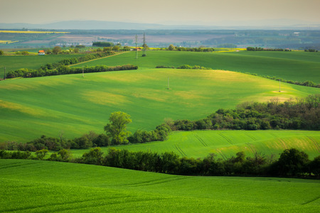 Moravian fields at spring near Strazovice, Czech Republic