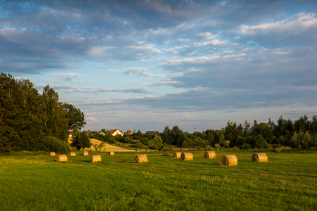 Landscape with bales of straw in the meadow 写真素材