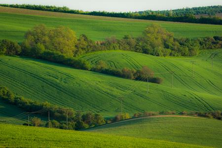 Moravian fields near Sardice, Hodonin, Czech Republic