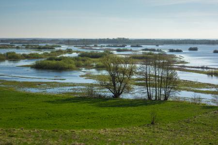 Biebrza river near Burzyn, Podlaskie, Poland