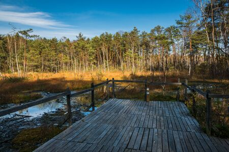 Wooden footbridge over the swamp in Celestynow, Masovia, Poland Stock Photo