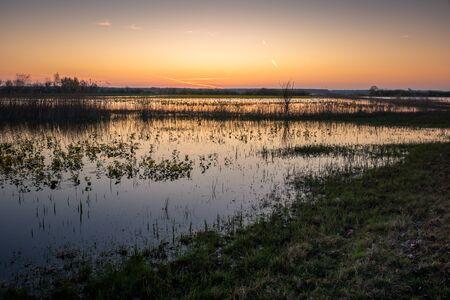 Backwaters of the Narew River at sunrise in Strekowa Gora, Podlaskie, Poland Standard-Bild