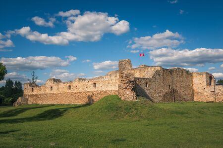 The ruins of the royal castle from the 14th century in Inowlodz, Lodzkie, Poland Archivio Fotografico