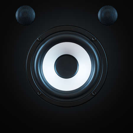 woofer: Black Woofer with two speakers and white circle