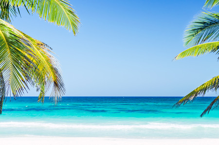 caribbean beach: Tropical vacation beach summer sea view. Palm trees over the background of turquoise sea and blue sky at exotic white sandy beach in the Caribbean sea Stock Photo
