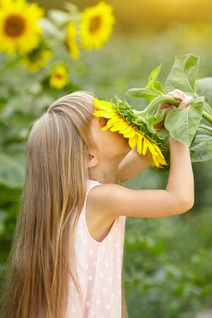 Little beautiful girl sniffs the sunflowers. Summer holiday. Summer field.