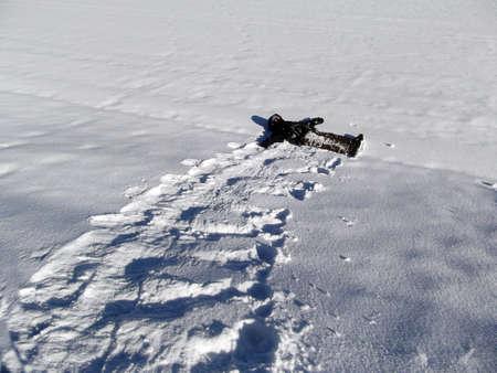 Snow Roll photo