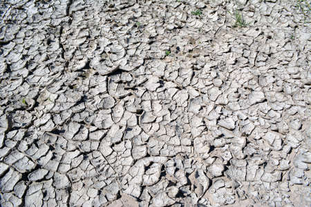 Dried earth after a heavy flood Stock fotó
