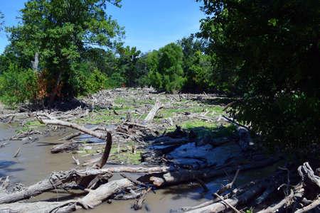 austin: Flooded River in Austin Texas